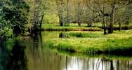 Soodla jõgi